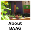 About BAAG