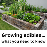 Growing Edibles... What you need to know