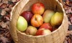 Apples (Heritage)