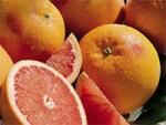 Citrus Trees General Information