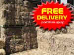 FREE Pea Straw Delivery
